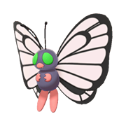 Butterfree EpEc variocolor hembra.png