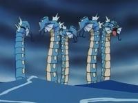 El Gyarados de James, junto con otros de su especie, dan vueltas a gran velocidad...