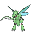 Scyther XY variocolor hembra.png