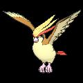 Pidgeot XY.png