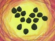 EH15 Semillas fosilizadas.png