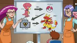 Esquema del proceso de evolución en la guardería.