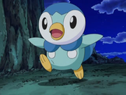 EP573 Piplup.png