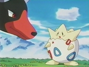 EP182 Houndoom y Togepi (2).png