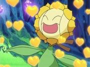 EE06 Atracción de Gabite rodeando a Sunflora.jpg