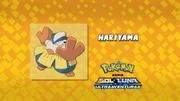 EP994 Quién es ese Pokémon.png