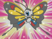 EP289 Beautifly de Jannet(2).png