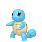 Squirtle macho