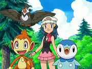 EP550 Maya con Chimchar, Staravia y Piplup (2).png