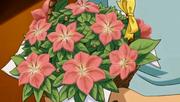 P11 Ramo de flores Gracídea.png