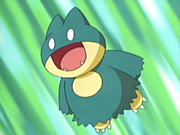 EP427 Munchlax de May.png