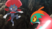 EP933 Weavile contra Hawlucha.png