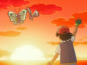 EP568 Ash recordando a Butterfree.png
