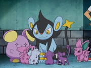 EP578 Pokémon.png