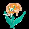 Florges naranja