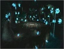 Coliseo Cristal.jpg