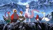 P16 Pokémon compañeros de Mewtwo.png