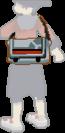 Bolsa del chico en Pokémon Oro HeartGold y Plata SoulSilver