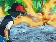 EP550 Chimchar no obedece a Ash.png