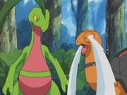 EP343 Torkoal y Grovyle.png