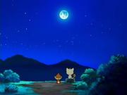 EP522 Chimchar hablando con Meowth bajo la luz de la Luna.png