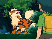 EP416 Arcanine comiendo.png