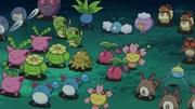 EP645 Pokémon salvajes.jpg