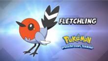 Fletchling