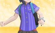 Camisa de Rayas Violeta.PNG