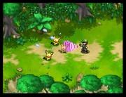 Pokémon Nappers atrapando a Pokémon de la Isla Dolzor.jpg