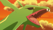 EE14 Rayquaza (2).png