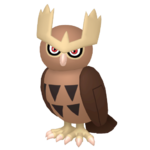 Noctowl macho