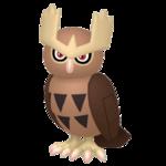 Noctowl macho