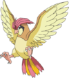 Pidgeotto (anime AG).png
