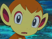 EP522 Chimchar.png