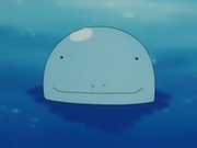 EP129 Quagsire.png