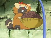 Un Bibarel comiendo.