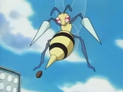 EP079 Beedrill de Jeanette.png