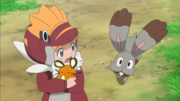 EP890 Bunnelby y Clem.png