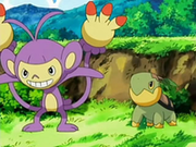 EP536 Ambipom y Turtwig.png