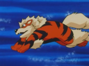 EP063 Arcanine.png