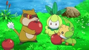 EP794 Pokémon de Isla Grande.jpg