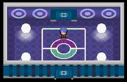 Liga Pokémon (Sinnoh) Sala Delos Pt.png