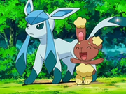 EP545 Glaceon y Buneary.png