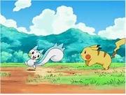 EP488 Pikachu y Pachirisu.jpg