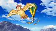 P10 Pidgeotto.png