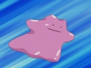 EP359 Ditto.jpg