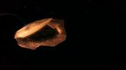 P16 Fósil de Genesect.png