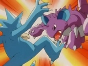 EP196 Nidoking y Golduck.jpg
