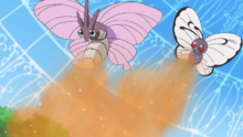 Venomoth y Butterfree de Goh usando paralizador.